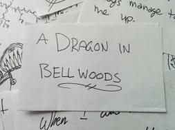 dragon in bellwoods